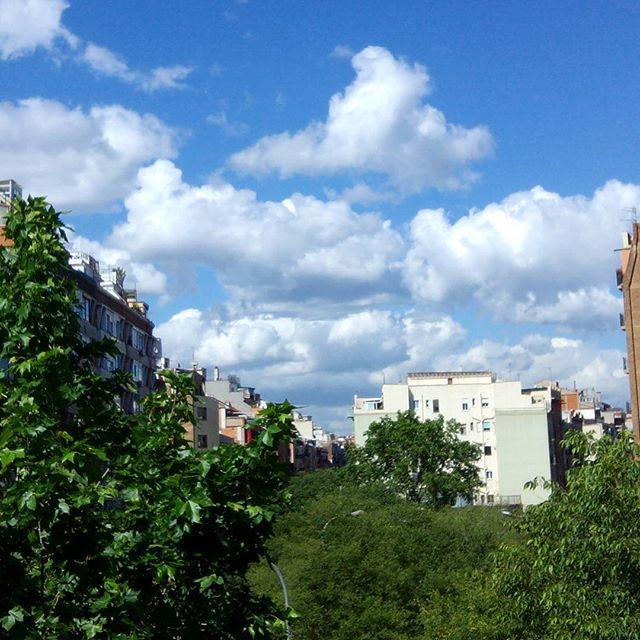 Buenos días! ;-) #årboles y #hojasverdes agradecidos y brillantes después de días de #lluvia #cielos #azules intensos y nubes bien #blancasSon los #colores de la #naturaleza#artenatural #airelimpio #barcelona