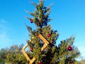 Árboles de navidad con marco.